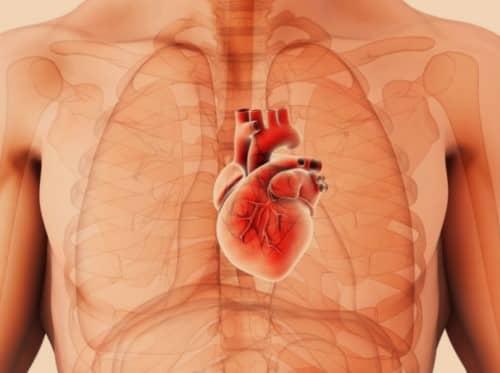 หัวใจโต (Cardiomegaly) : อาการ สาเหตุ การรักษา
